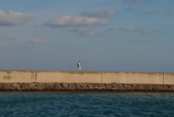 夕方には、堤防沿いをお散歩される方も