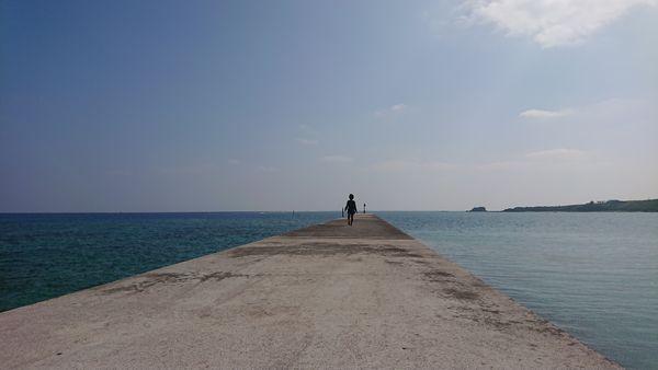 伊野田漁港、海に伸びる堤防