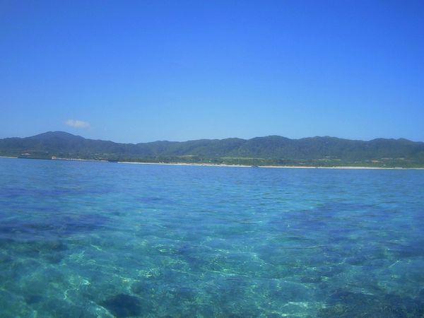 1月とは思えない陽気の石垣島です。