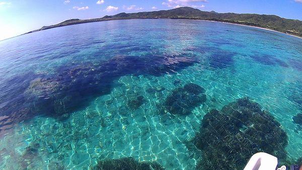 これが石垣島の海