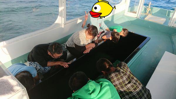 地域の方もグラスボート