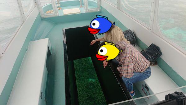 やっぱりグラスボートですよね!