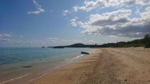 伊野田漁港から始まる堤防沿い穴場ビーチ散策♪