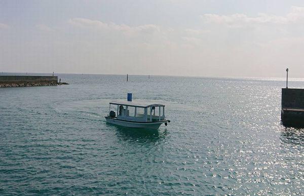 伊野田漁港発グラスボート