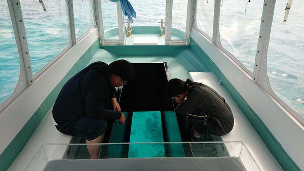水中世界も楽しみました