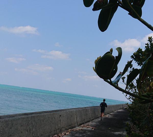 堤防沿いを一直線