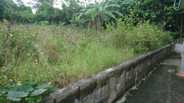 隣の敷地との境界線