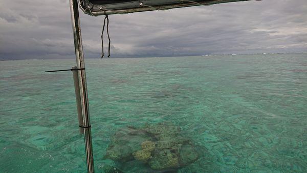 でもほら、エメラルドグリーンの海は健在です。