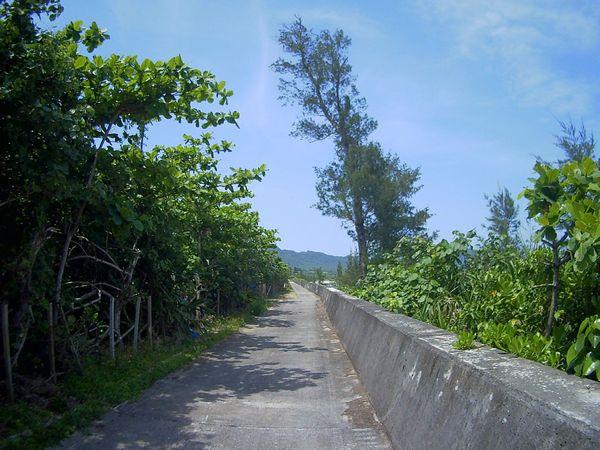 いつもの通勤道。石垣島は今日も晴れです