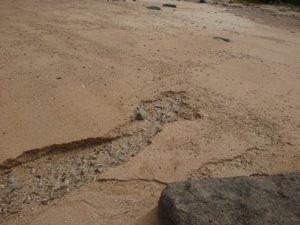 陸ブログ♪ビーチ散策で発見!湧き水です!