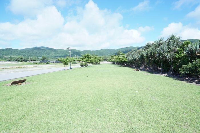 伊野田漁港、北側の芝生スペース