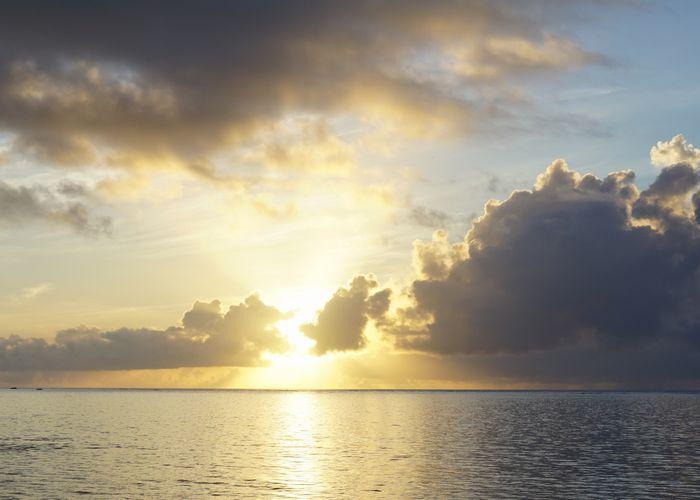 早朝、朝日を楽しむグラスボートツアー