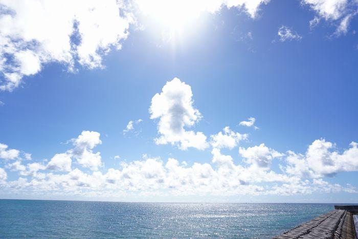 夏空満開の石垣島