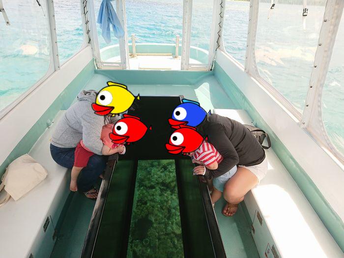 ご家族そろって石垣島の海を水中観察
