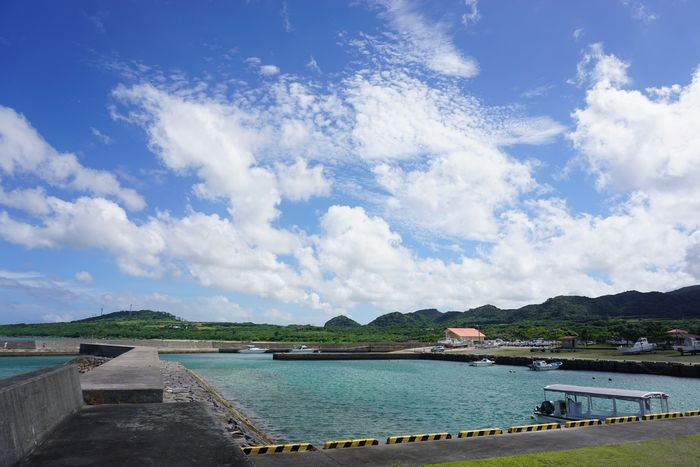 港から見える風景