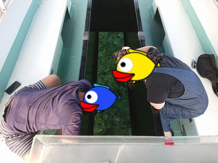 グラスボートに没頭のお二人です