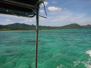 石垣島北部、東海岸のグラスボートはこんな方におすすめです!