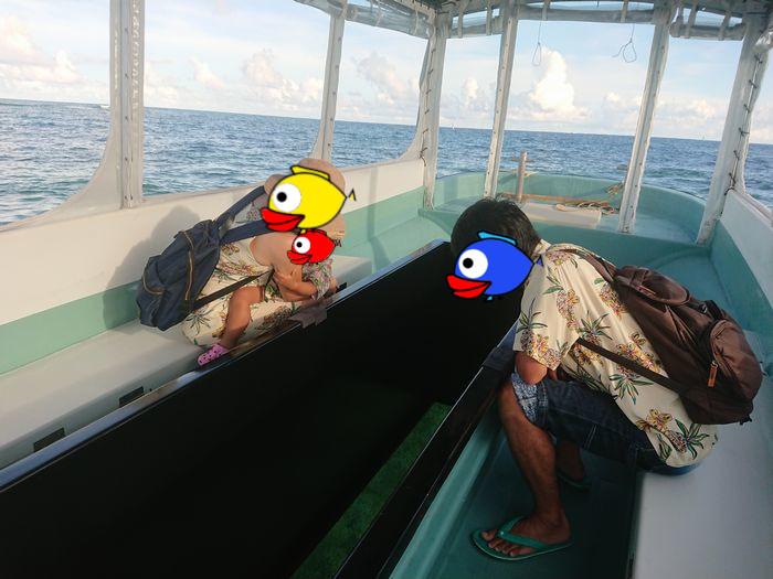 石垣島の水中に没頭です