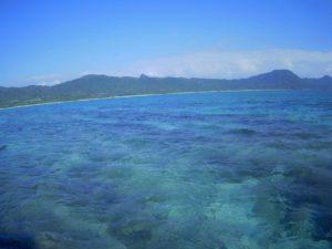 石垣空港から近く30分で楽しめる!石垣島の北部、東海岸でグラスボート!ふらっとお立ち寄りください♪