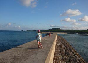 吹き抜ける風が心地よい伊野田漁港♪夕方と朝がおすすめグラスボート