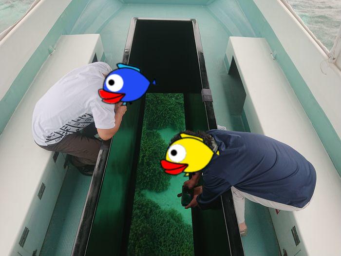 初めての石垣島旅行でグラスボートです
