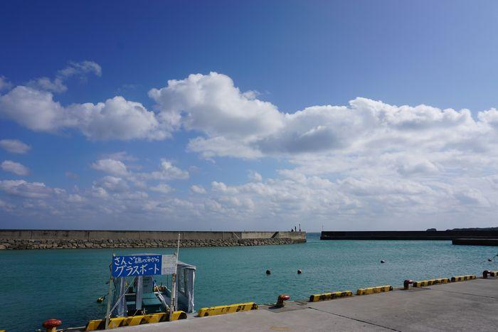 屋っと晴れ!青空広がる天気となりました!