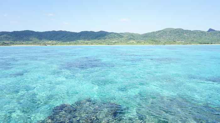 透明度抜群の石垣島の海です。