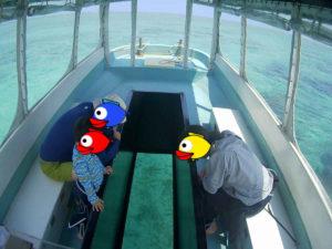 4歳のちびっこも楽しんだグラスボート♪