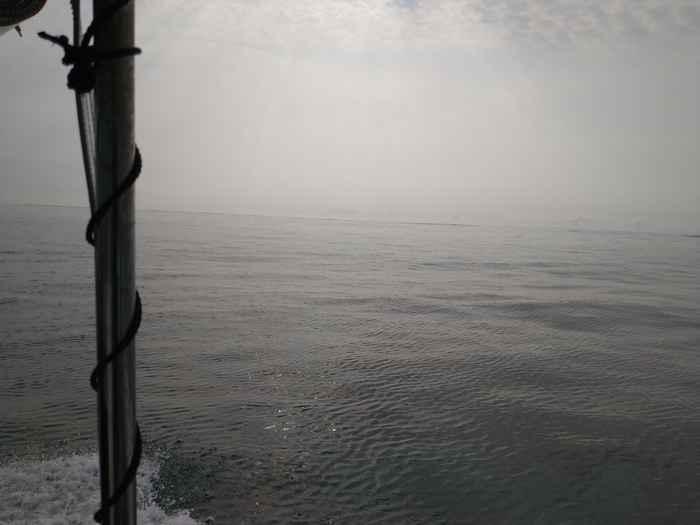 穏やかなプールのような海
