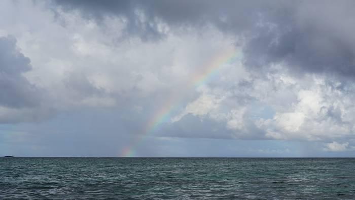 虹の登場です!