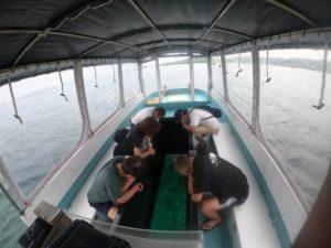 雨の天気は!グラスボートには関係なし♪